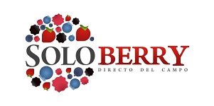 SOLOBERRY